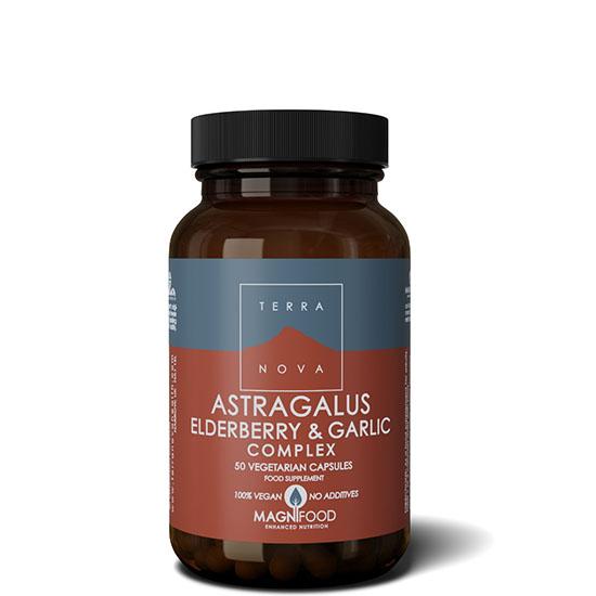 astragalus elderberry garlic 50 capsules